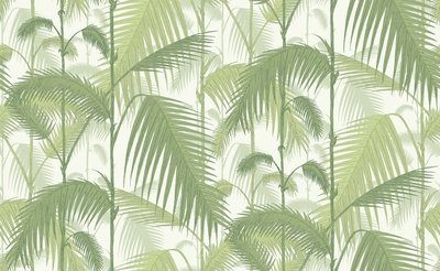 Cole and Son Palm Jungle Behang Wit Licht Groen