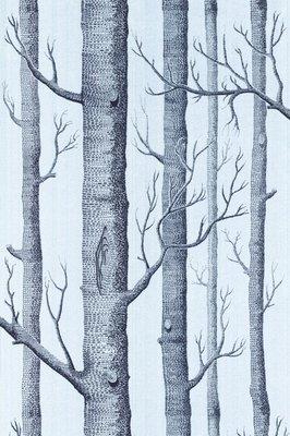 Woods .