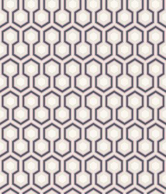 Hicks Hexagon