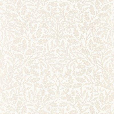 Pure Acorn 'Ivory / Pearl'