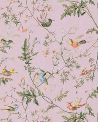 Hummingbirds Behang