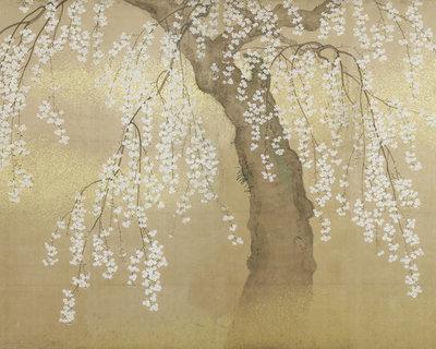 Japans Behang Kersenboom Bloesem Goud - Beige