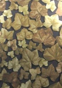 Ivy Leaf behang Goud