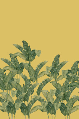 Bananella Behang Tres Tintas