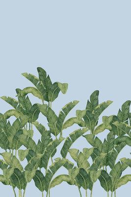 Tropisch Behang Bananella
