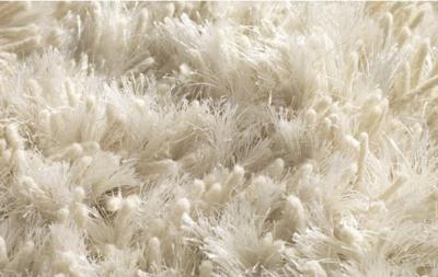 Luxe Vloerkleed Lustre Ivory