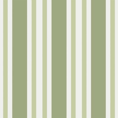 Polo Stripe Behang Cole and Son