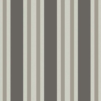 Polo Stripe Streep Behang