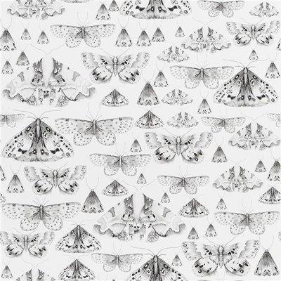 Vlinder Behang Issoria Designers Guild