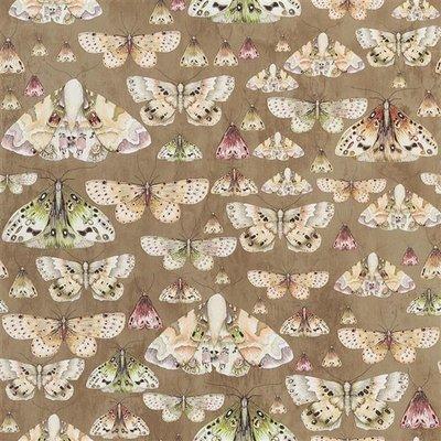 Vlinder Behangpapier Issoria Designers Guild