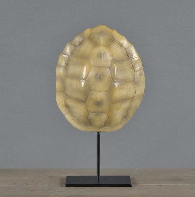 Schildpadschild op voet 22 cm Landschildpad
