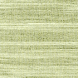Shang Extra Fine Sisal Behang Thibaut Willow
