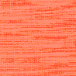 Shang Extra Fine Sisal Behang Thibaut Apricot