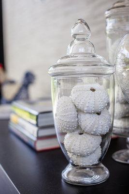 Showmodel Zee-egels In Apothekers Vaas Small