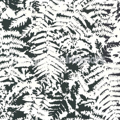 Little Greene Fern Behang - Off Black
