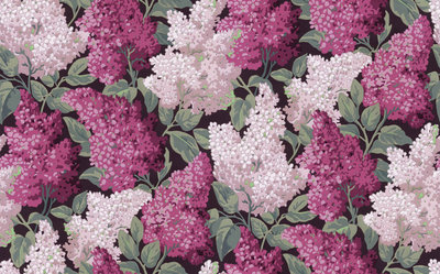 Cole and Son Lilac Grandiflora Behang
