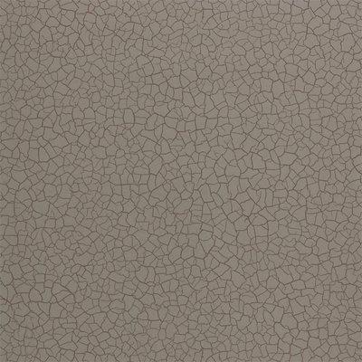 Zoffany Cracked Earth Behang