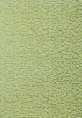 Thibaut Chameleon Behang