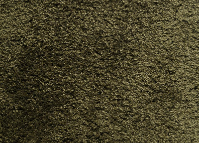 Carpetlinq Baltimore Vloerkleed 34 mm Groen