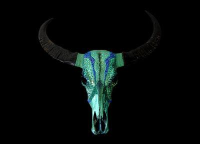 Skull Art Buffel Schedel Chavon
