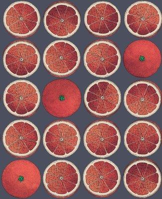 Fornasetti Arance Bloedsinaasappel Behang