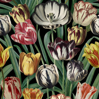 Mind the Gap Tulipa Behang