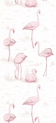 Flamingos Roze