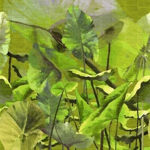 ELITIS Lost In Plantation Behang Paneel VP_429_01
