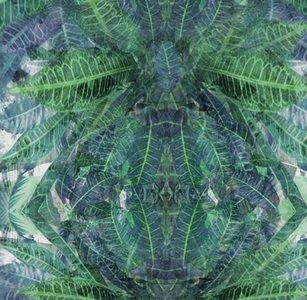 OXYMORE TWO_Jungle Silk_77680192