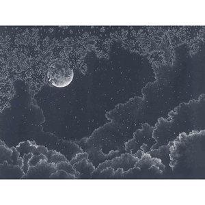 Les Dominotiers Moonlight behang DOM 302