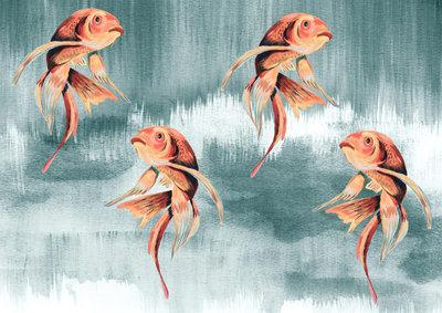 Catchii Koi Fish Art Behang - Lichtblauw