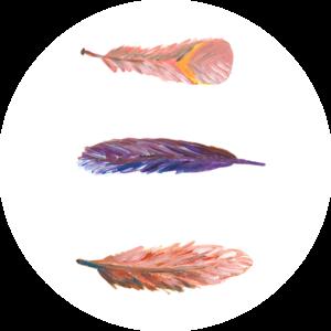 Catchii Dwarrelende Veertjes Behangcirkel