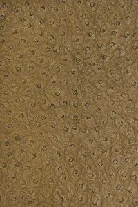 Struisvogel Leer Behang ARTE T6827 Sophisticated Textures Luxury By Nature