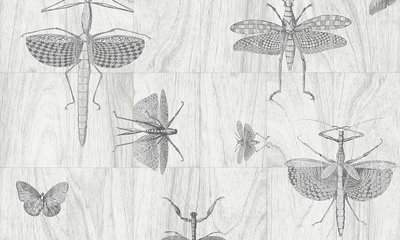 Behang ARTE Wings 42001 - Ligna Behangpapier Collectie Luxury By Nature.jpg