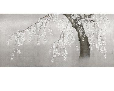 Ontdek japans bloesem behang hier luxury by nature - Zilvergrijs behang ...