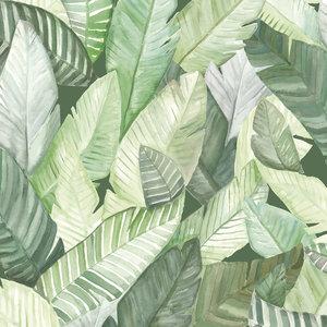 352036909 - Tropisch Behang