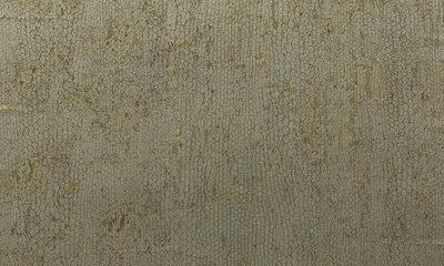 behang arte cobra behangpapier ca22.jpg