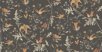 Cole & Son Hummingbirds behang Icons behangpapier 112/4017