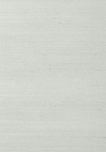 Shang Extra Fine Sisal Behang Thibaut Grasscloth Resource Volume 4 T41171 Slate