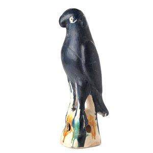 Papegaai donkerblauw