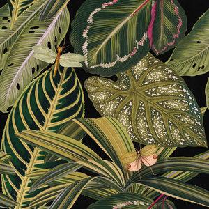 Mind the Gap Amazonia Behang Designer Wallpaper 2017 WP20159