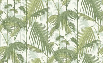 Cole and Son Palm Jungle stof F111-2007 wit groen